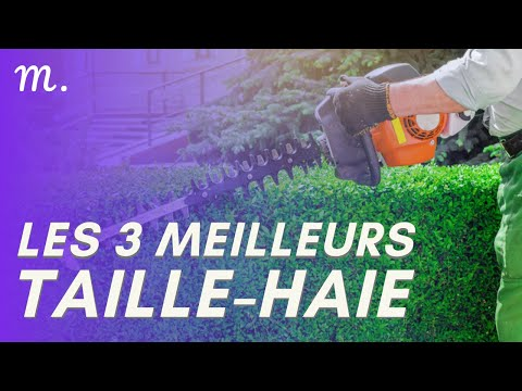 🥇TOP 3 TAILLE-HAIES (2021)