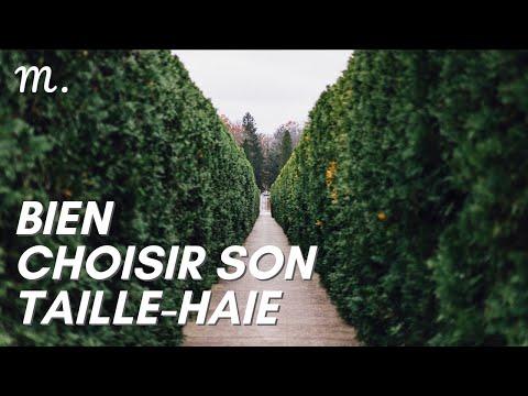 TAILLE-HAIE : Bien Choisir en 2021 🌳(Guide d'Achat Coupe-haie en 60s.) | Maisonae