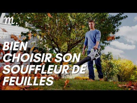SOUFFLEUR DE FEUILLES : Bien Choisir en 2021 🌿 (Guide d'Achat Souffleur Jardin en 60s.) | Maisonae
