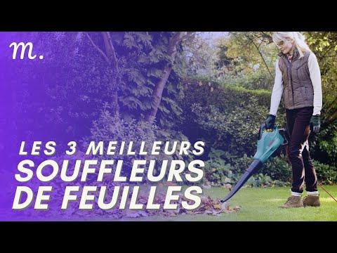 🥇TOP 3 SOUFFLEURS DE FEUILLES (2021)